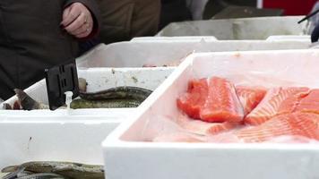 comprando peixe fresco