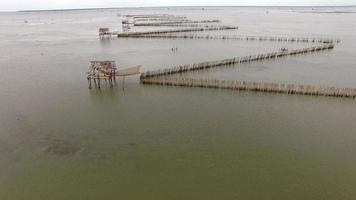 panier flottant d'huîtres du quai de pêche local video
