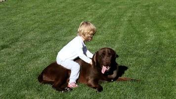 bambina e marrone labrador retriever