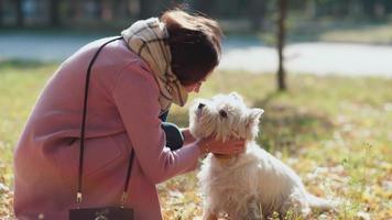 la ragazza si diverte a passeggiare con il cane. giocare con il cane. cucciolo allegro