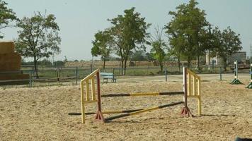 sport equestre. salto ostacoli