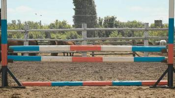 junge Frau springt Pferd über ein Hindernis während ihres Trainings in einer Arena