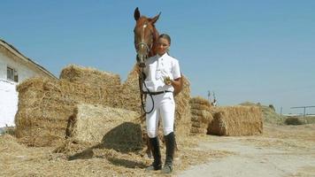 ragazza alimenta il cavallo