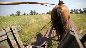 vista da carroça puxada por cavalos para a estrada da vila à frente video