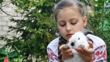 Little girl holding white rabbit video