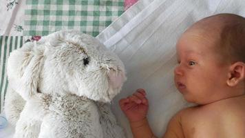 menino recém-nascido olhando para o grande coelho de brinquedo video