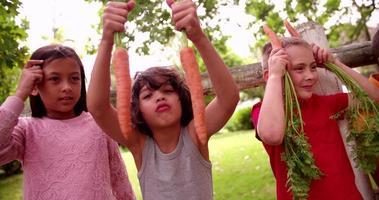 garotinho sendo bobo com duas cenouras e seus amigos video