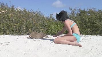 femme avec ragondin loutre sable terre cuba vidéo video