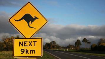 Kangaroo Sign HD 1080P video