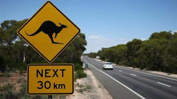 Kangaroo sign hd with car driving past video