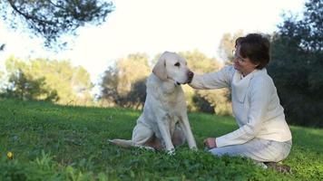 donna con cane labrador anziano nella natura
