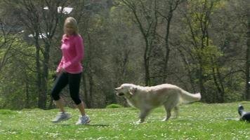 donna matura con cane da jogging in campagna girato su r3d