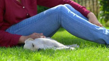 mulher está acariciando seu cachorrinho adormecido