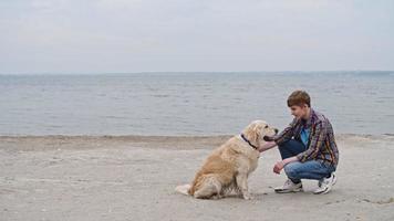 treinamento de golden retriever inteligente na praia