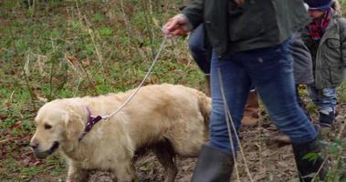 Familia en invierno caminar en el campo con perro rodado en r3d