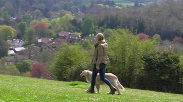 retrovisor de mulher levando cachorro para caminhada em r3d video