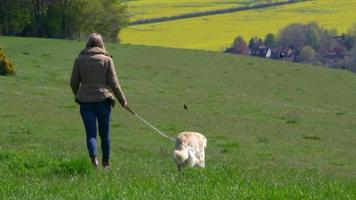 mulher madura levando cachorro para passear no campo, filmado em r3d video