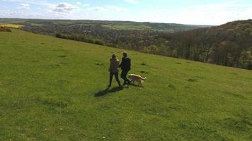 foto aérea de casal maduro e cachorro em caminhada no campo video