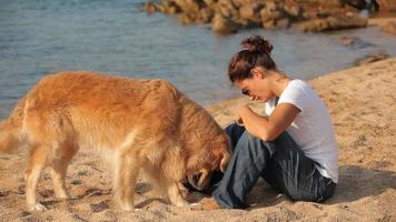 hermosa joven en la playa con golden retriever video
