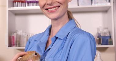 veterinario che tiene un coniglio
