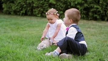little boy and girl playing with a rabbit in a meadow
