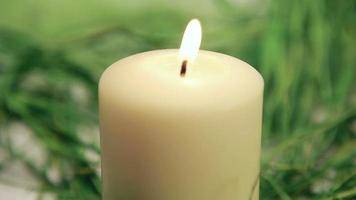 Candle and the Easter Bunny video