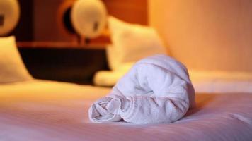 coelho de toalha video