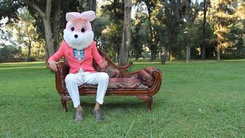 Alice in Wonderland rabbit funny
