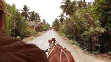 Befreiungspferd Mekong Delta Vietnam
