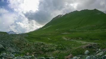 riesige Schafherde, die auf den georgischen Bergen weidet. Zeitraffer video