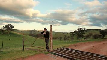 allevatore di pecore australiane