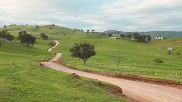 allevamento di pecore australiane
