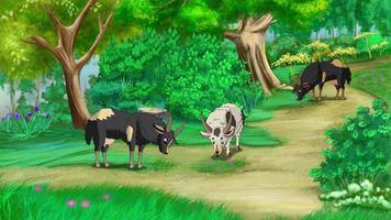 cabras pastando en un prado uhd video