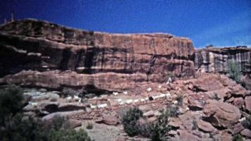 1972: capre di montagna che vagano liberamente lungo i pericolosi bordi delle scogliere.