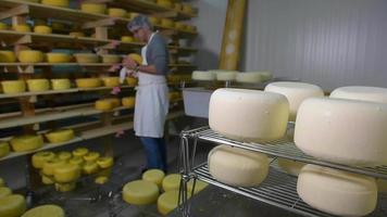 Raffinieren von Käse in Holzregalen