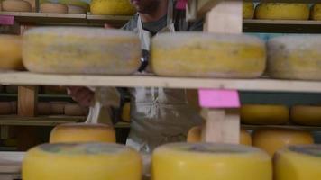 refinando queso en estantes de madera