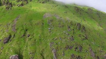 Vista aérea de ovejas pastando en la ladera de la montaña