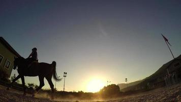 cheval sautant obstacle au coucher du soleil, cavalier silhouette