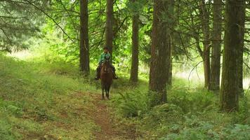 Young girl riding a horse in a forest