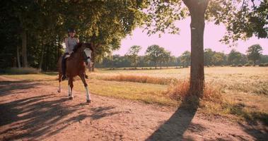 Mädchen reitet ein schönes Pferd auf dem Weg entlang eines Feldes