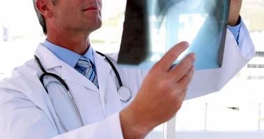 Arzt hält Röntgenbild hoch, um es zu studieren