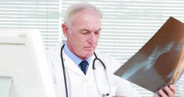 ernsthafter Arzt, der eine schwangere Frau Röntgen untersucht