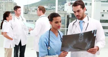 equipe médica olhando para o raio x juntos video