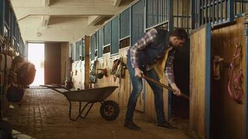 homem está limpando um estábulo de feno com um forcado. video