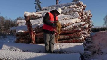 Leñador intente recoger la cuerda cerca del montón de troncos cubiertos de nieve en invierno