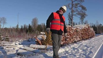 Lumberjack with rope and ax calling other workers and walking away video