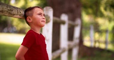 garotinho encostado em uma cerca, sonhando no parque de verão video