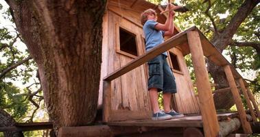 menino em uma casa na árvore brincando com um avião de brinquedo de madeira video