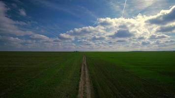 Vista aérea de una zona de campos rurales verdes bajo un cielo azul video