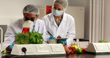 scienziati che sperimentano insieme sul cibo video